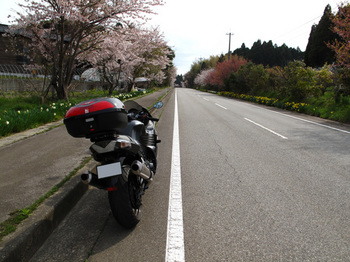 100418notoichi015.jpg