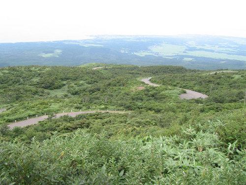 touhoku025.jpg