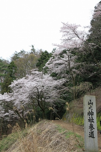 yamanokami006.jpg