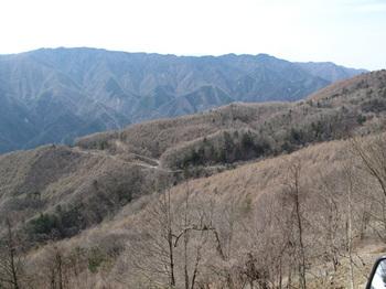100426sira_jinnba006.jpg